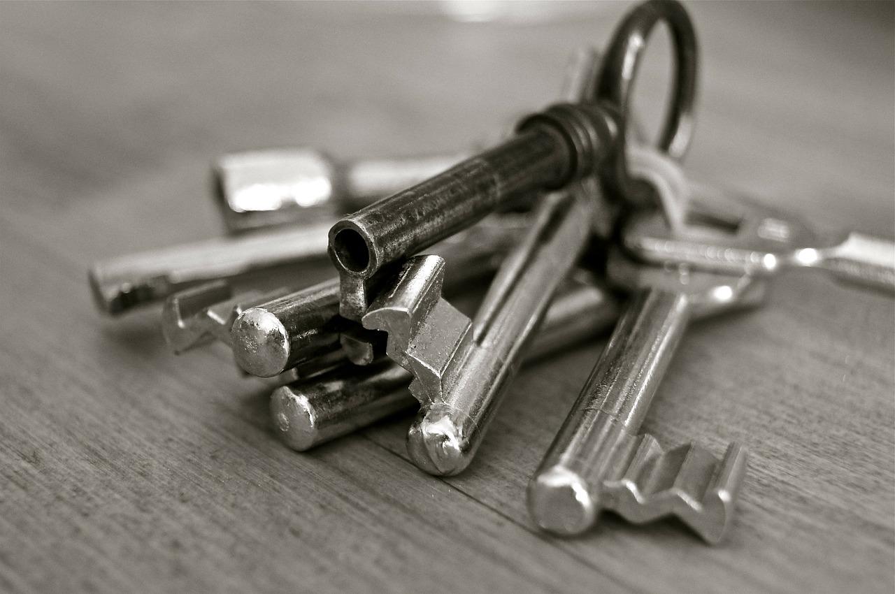 Злочинна банда: на Київщині викрадали людей та продавали їх помешкання - квартири, злочинна група, заволодіння чужим майном, викрадачі - key 96233 1280