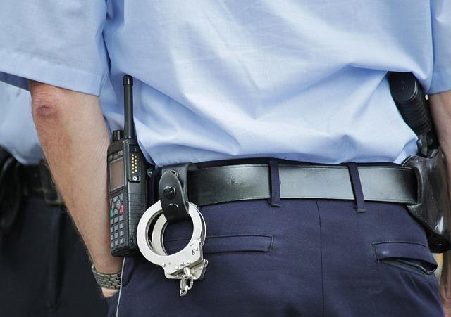 На Київщині молодик вдарив правоохоронця (відео) - правоохоронці, напад на поліцейського, напад - police 378255 640 1