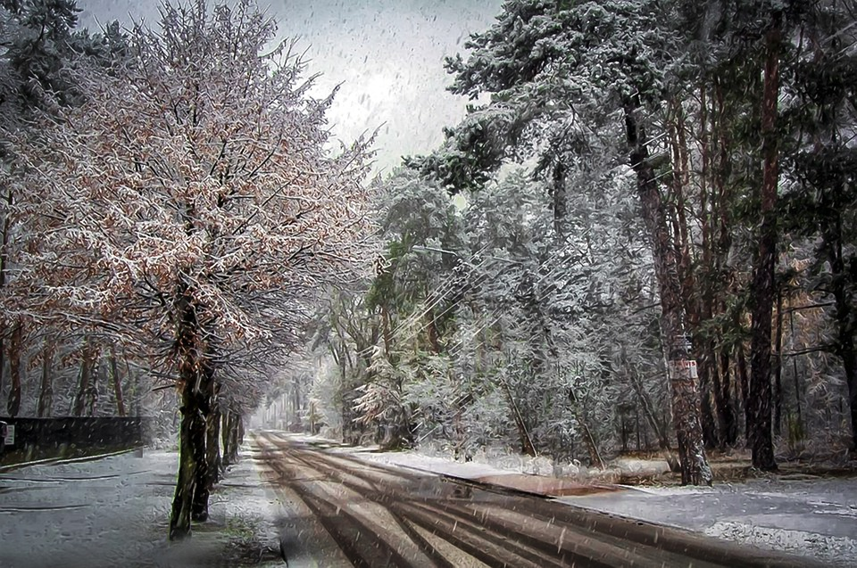 Погода 4 лютого на Київщині: хмарно та дощ зі снігом - сніг, прогноз погоди, погода, мокрий сніг, Дощ - 04 pogoda2