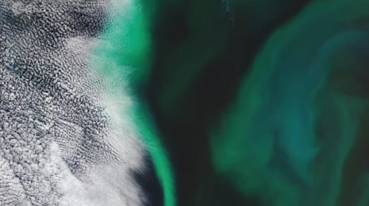 Вчені пояснили, звідки у Тихому океані з'явилися гігантські «зелені плями» - Японія, Світовий океан, океан, забруднення води - 08 okean
