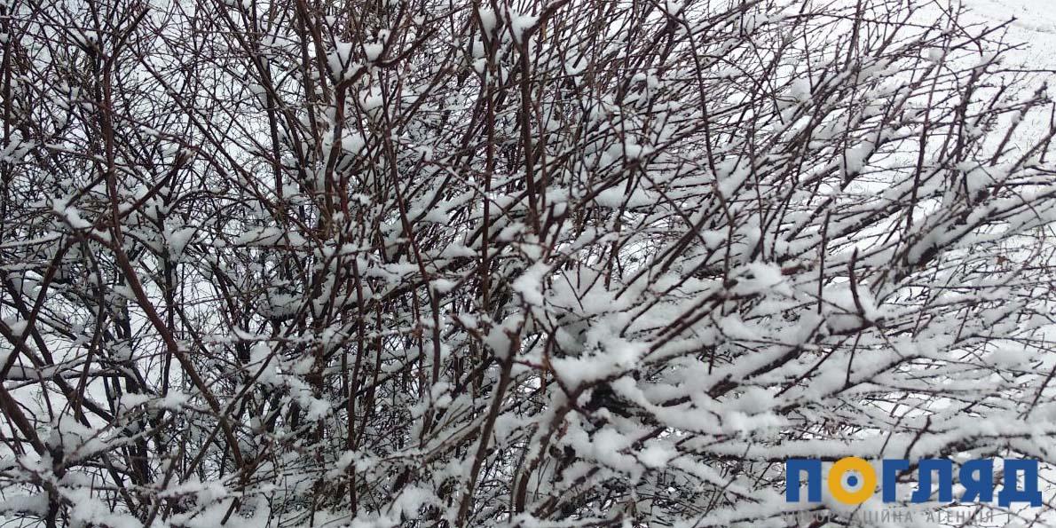 8 лютого на Київщині сніжитиме - снігопад, сніг, прогноз погоди, погода - 08 pogoda2