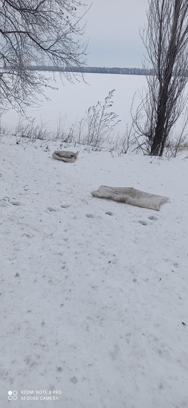 На Переяславщині нелюди викинули пса і котів на засніженій трасі - Тварини, собака, сніг, коти - 148269069 2855062098146611 9149212460664144235 o