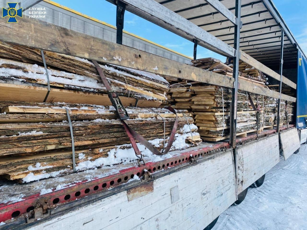 З України намагалися вивезти цінну деревину на 300 тис євро - незаконне вирубування лісу, ліс, Контрабанда, Дерева - 19 derevo