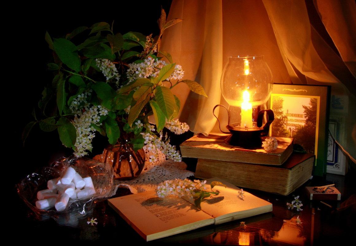 У Василькові вперше відбудеться поетичний вечір - Творчий вечір, поет, День всіх закоханих, вірші, Відпочинок - 5605459