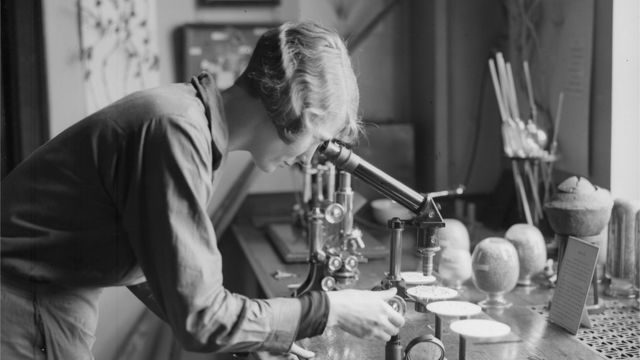 11 лютого у світі відзначають День жіноцтва у науці - Наука, жінки, винахід - 99945667 gettyimages 3063745