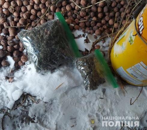 У жителя Білоцерківщини під час обшуку вилучили 2 кг марихуани - правоохоронці, наркотики, конопля - belkanarko4