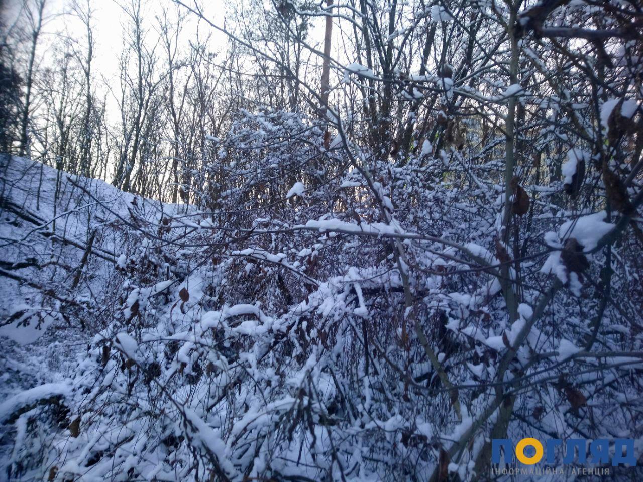 Погодні випробовування продовжуються: Київщину попередили про хуртовину - штормове попередження, шквальний вітер, снігопад, погода, жовтий рівень небезпеки - photo5269702741234659864