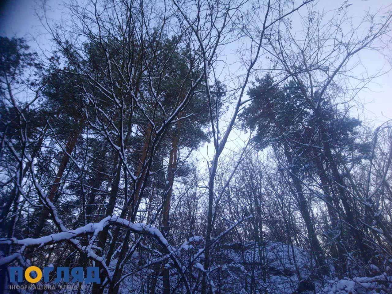 17 лютого на Київщині буде морозно - прогноз погоди, погода, морози, Мороз - photo5269702741234659867