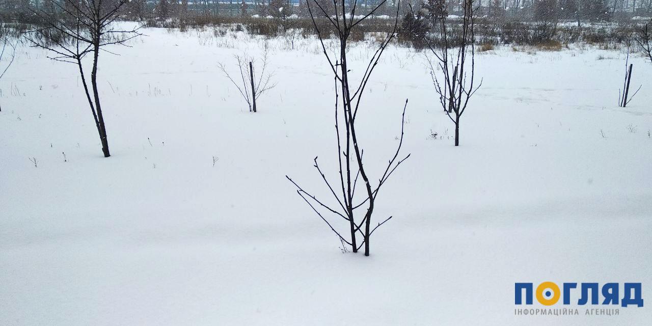 Погода 15 лютого на Київщині: похмуро, але майже без опадів - температура повітря, прогноз погоди, погода, Зима - photo5274142693741670712