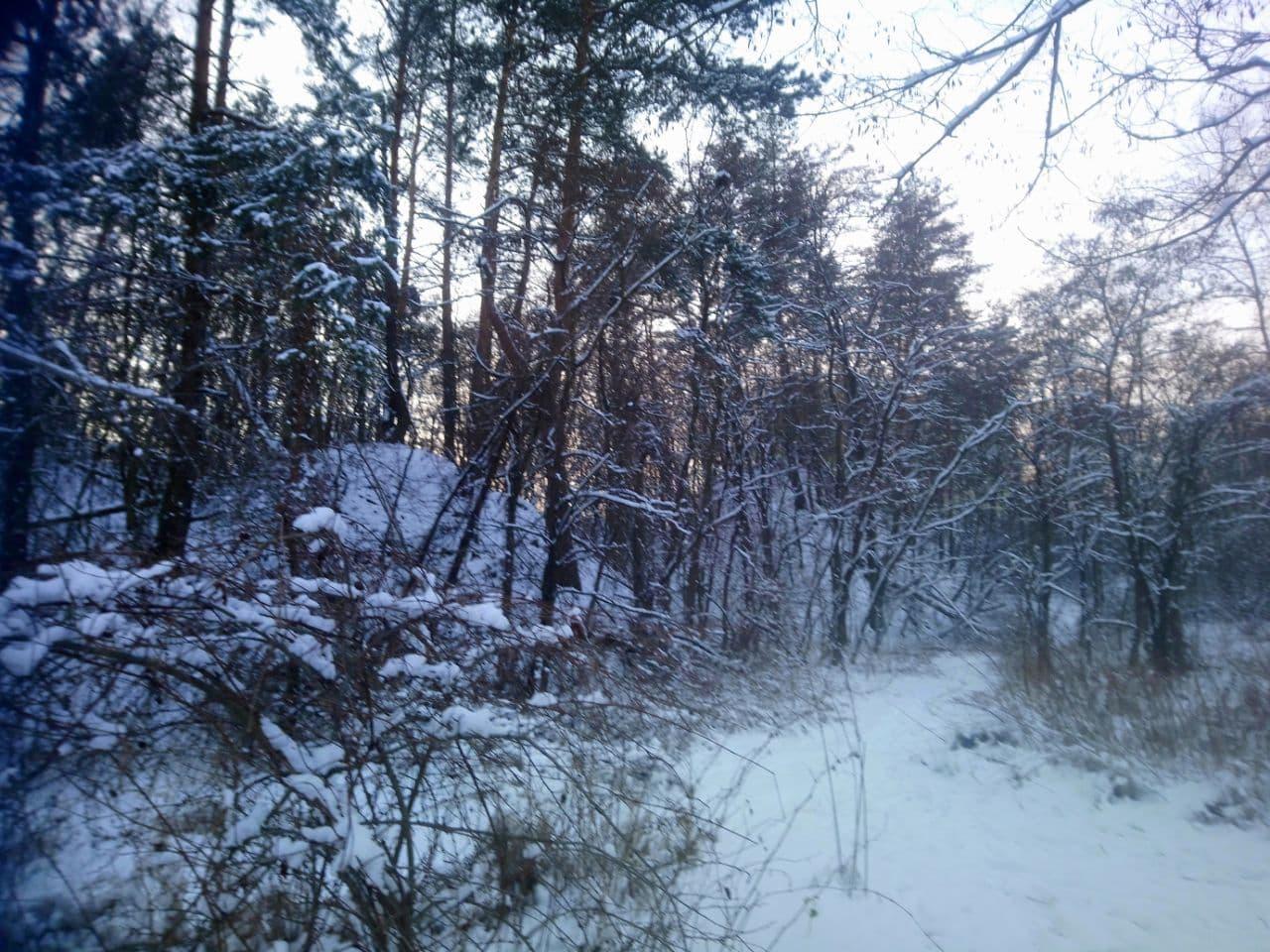 Жовтий рівень небезпеки: 9 лютого негода продовжить «атакувати» Київщину - снігопад, погодні умови, ожеледиця, негода, жовтий рівень небезпеки - photo 2021 02 09 10 22 09