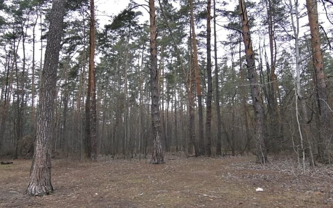 Забудова заплави річки Нивки - загроза Біличанському лісу! - мікрорайон, забудова, Біличі, Біличанський ліс - photo 2021 02 15 12 28 30