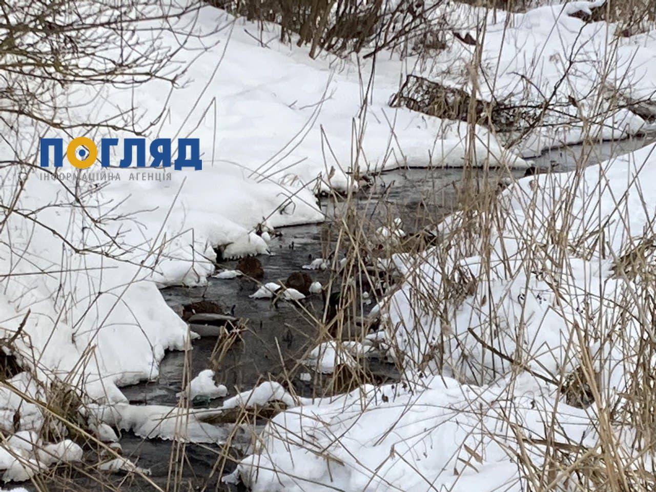 Температурні коливання в Україні: вночі – мороз, вдень – потепління -  - photo 2021 02 20 12 30 17