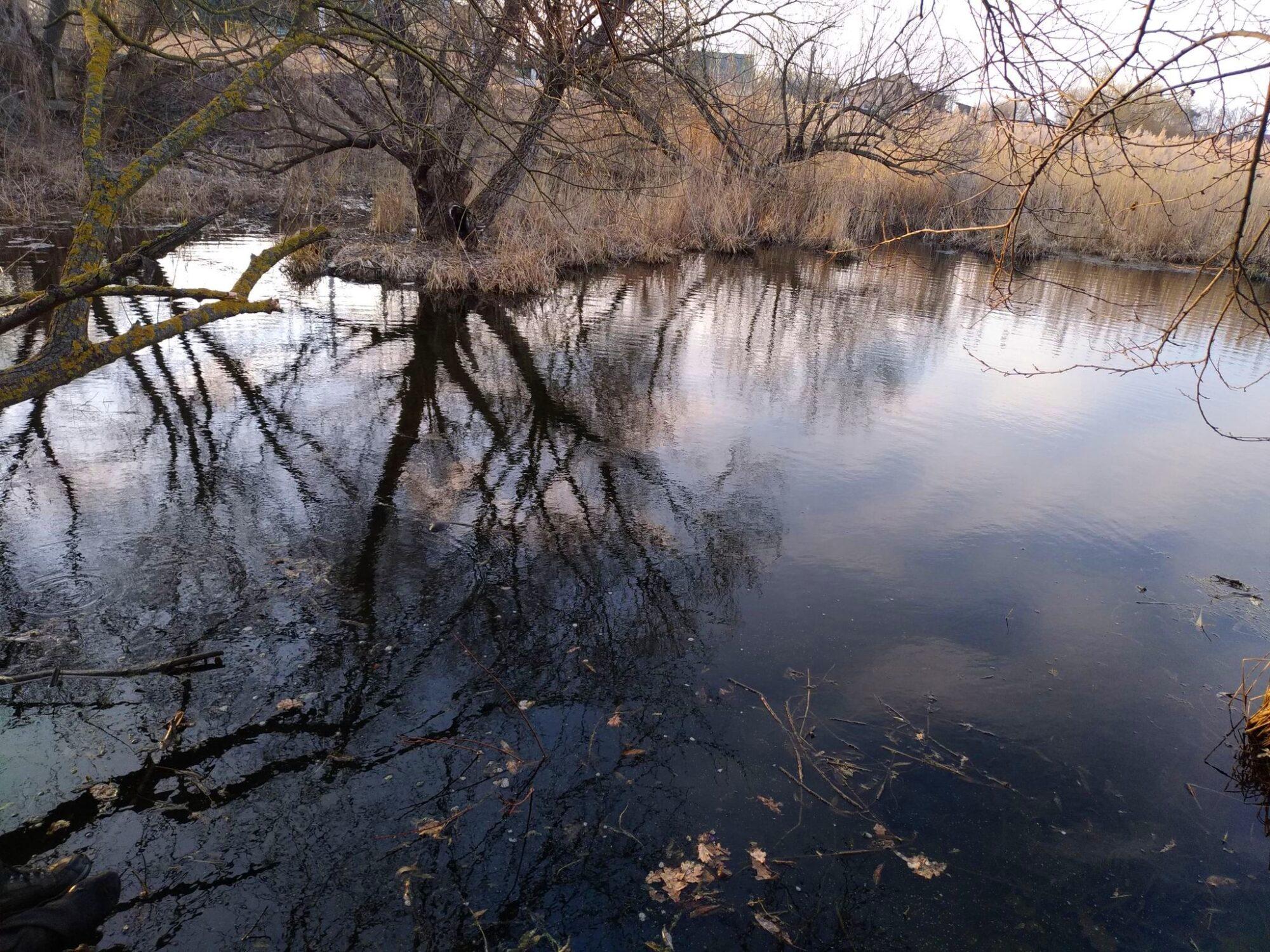 В одному із озер у Бучансьвому районі знайшли тіло потопельника - тіло, потопельник, озеро, Микуличі, Бучанський район - 163826891 449344819619364 4805787842517452014 n 2000x1500